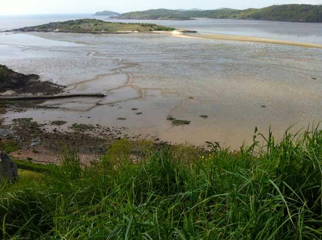 Rough-Island-Urr-Estuary-tide-out