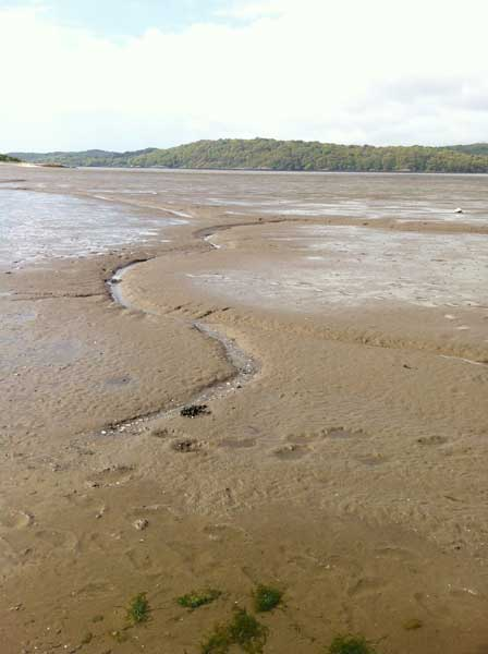 mudflats-and-channels-Rockcliffe-jetty
