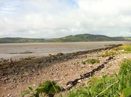 rockcliffe-foreshore-urr-estuary