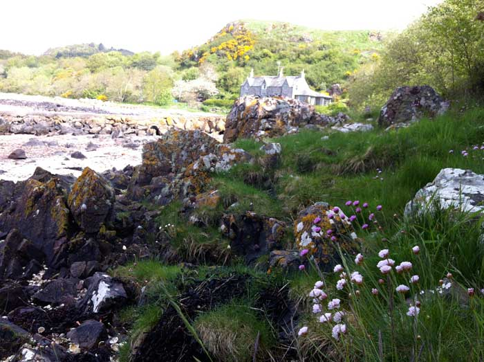 sea-pinks-and-jetty-and-cottage-Rockcliffe