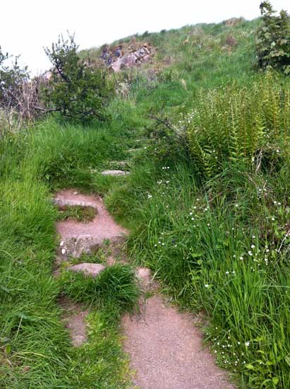 steps-Mote-of-Mark-path