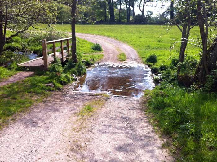 stream-crossing-Rockcliffe-mote-field