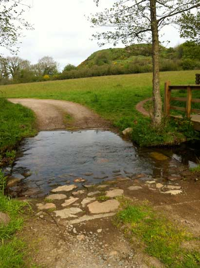 stream-crossing-with-bridge-Rockcliffe