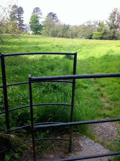 through-gate-leading-to-Mote-field-Rockcliffe