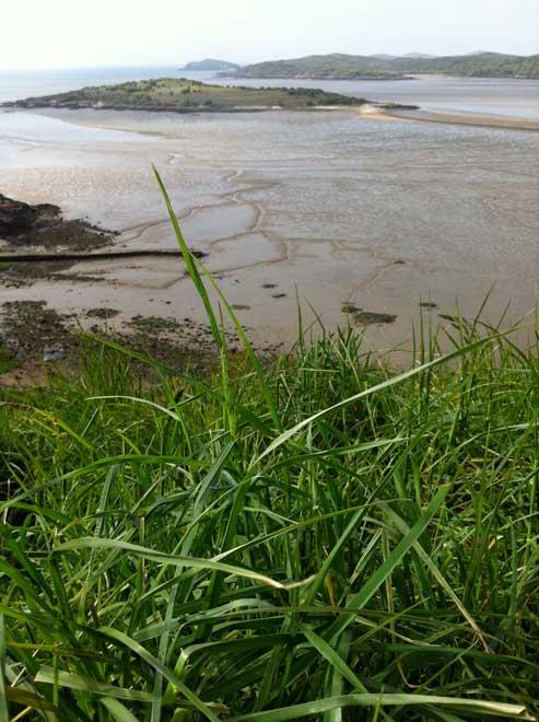 vertiginous-view-grassy-foreground-Mote-of-Mark