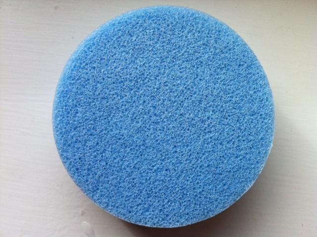 blue-sponge-photo