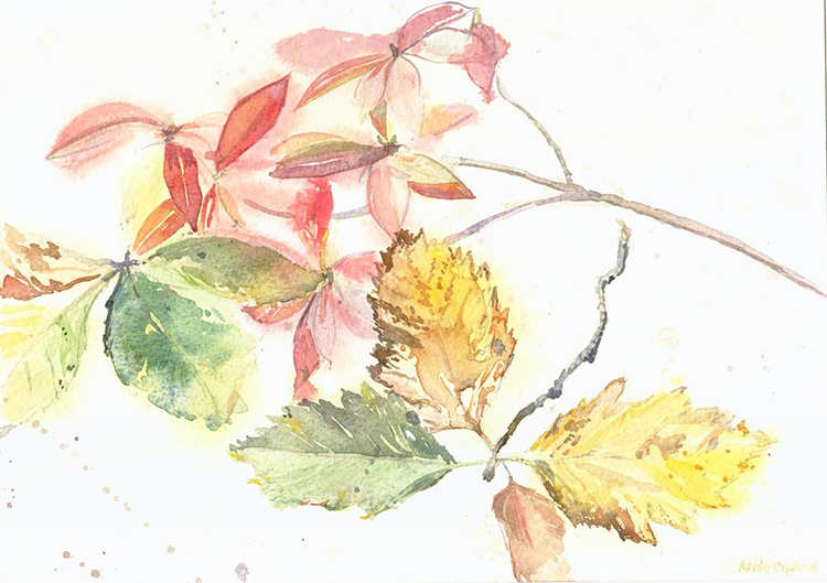 Autumn-Leaves-watercolour-web