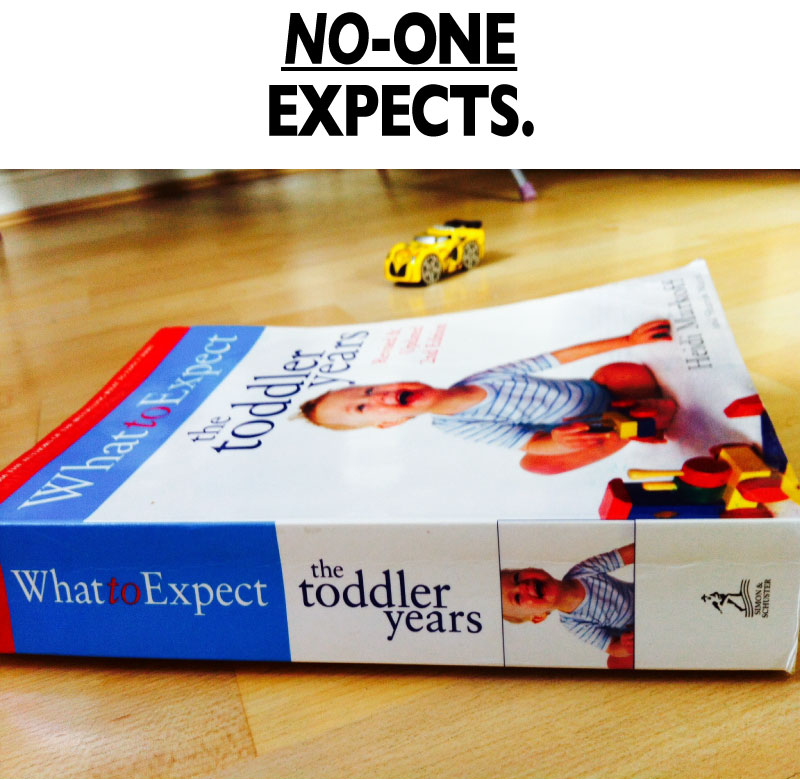 What To Expect: The Toddler Years - No one expects.